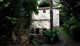 El molino