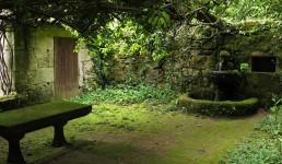 jardín 7 1100x825